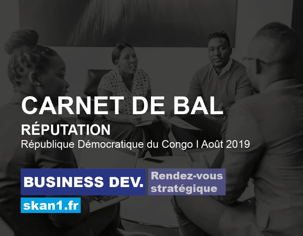 Exemple mission skan1 Evaluation Investigation Background Check Diligence Risque Integrite Conformite Ethique 03 Business Development Rendez Vous Strategique Reputation Carnet Bal Republique Democratique Congo